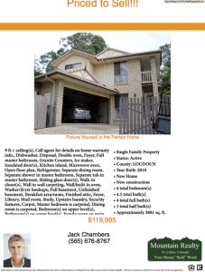 Real Estate Flyer Template Sample 5